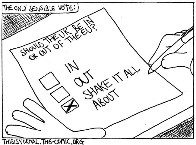 A Sensible Vote